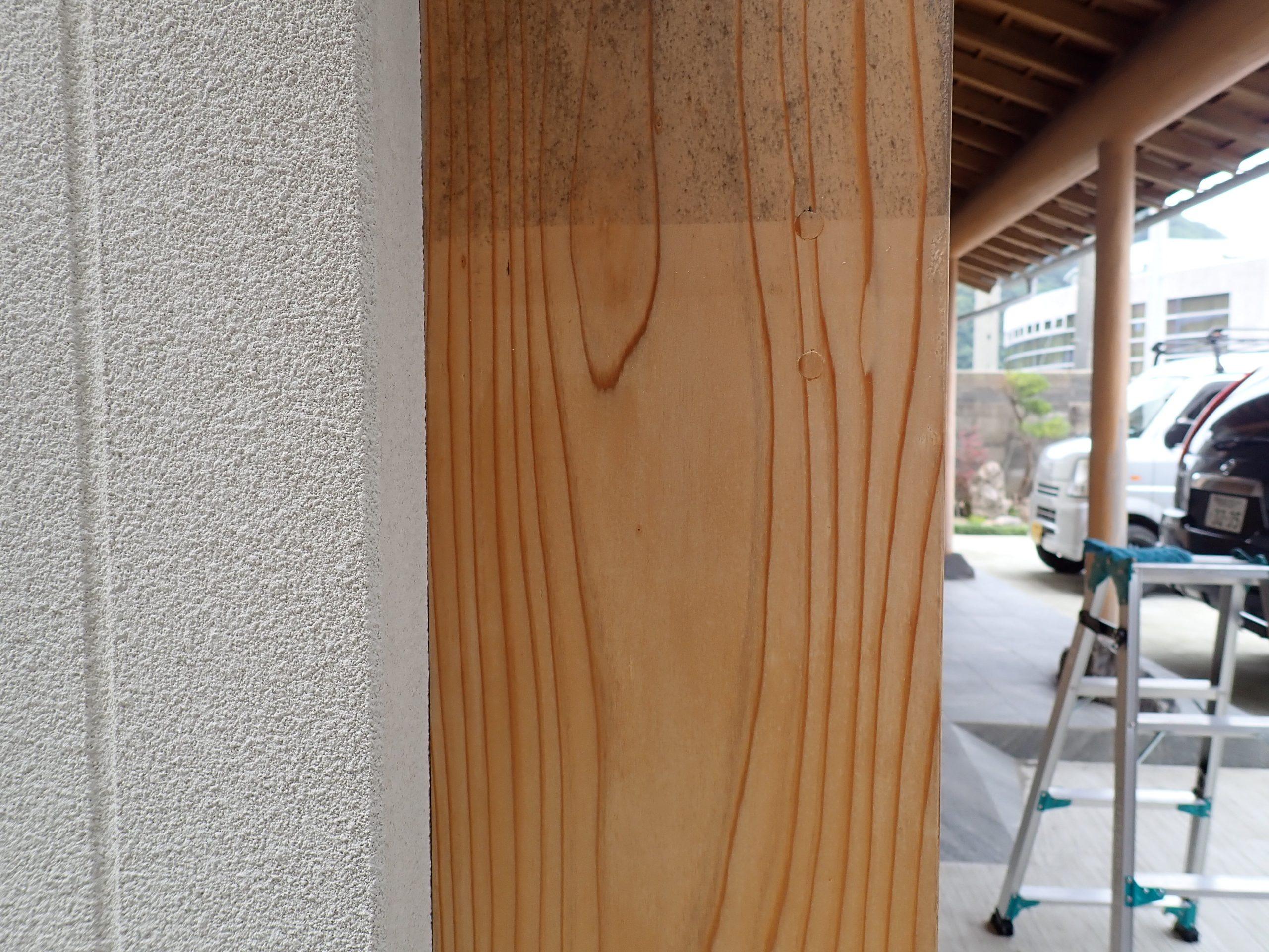 木材 上部カビ取り未施工・下部カビ取り施工部